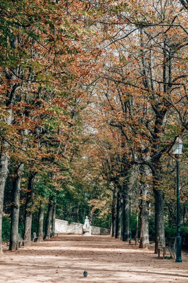 Park Des Hauteurs