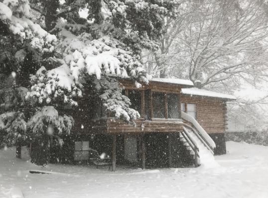 cute cabin airbnb rental